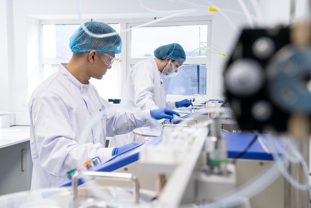 Scientists working in lab on assay development