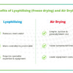 Differences between Freeze Drying and Air Drying graphic