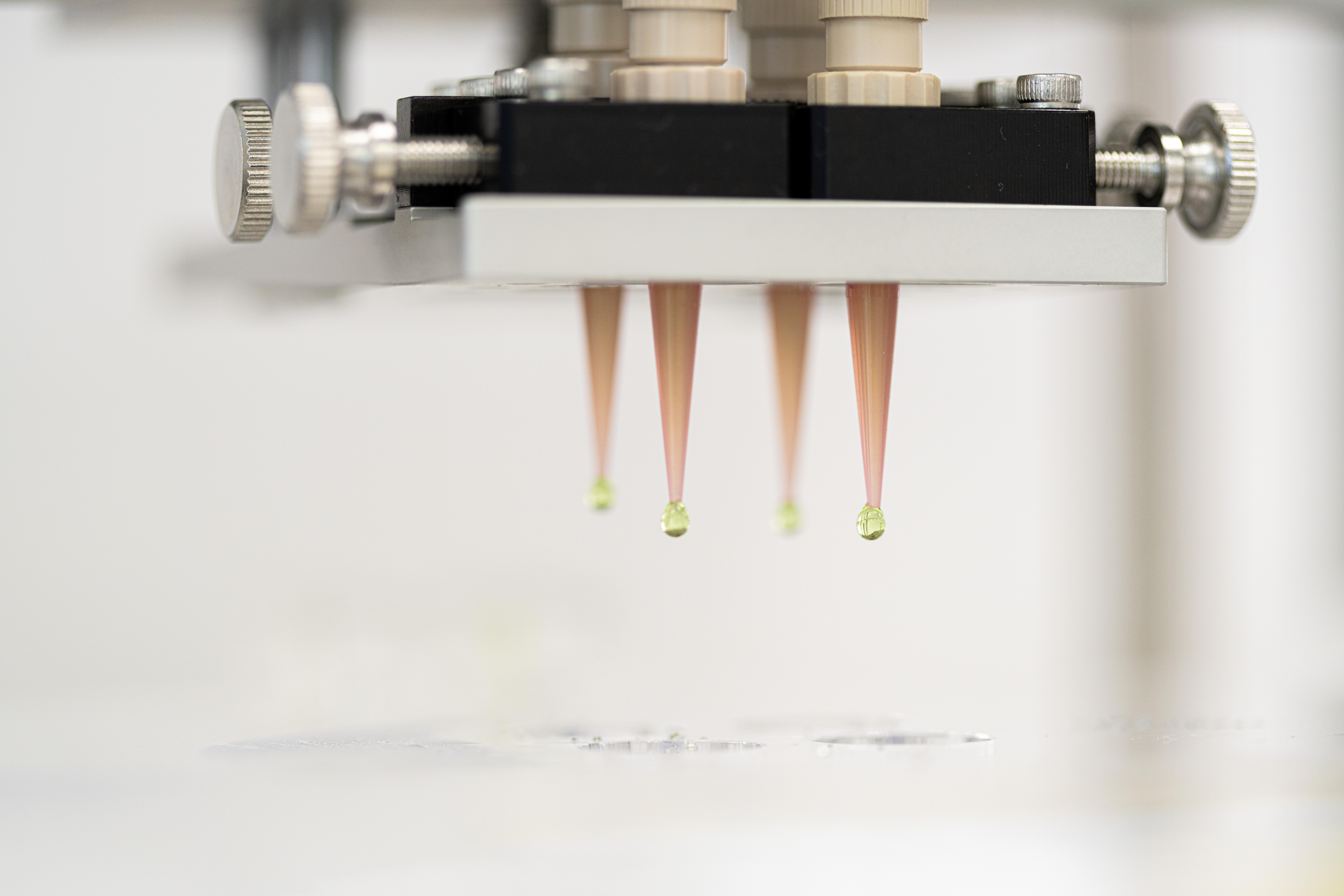 Lyophilised PCR beads dispensed into liquid nitrogen